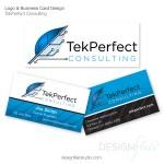Branding---Tek-Perfect---DF